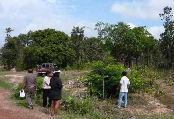 lagebesprechung urwaldrohdung